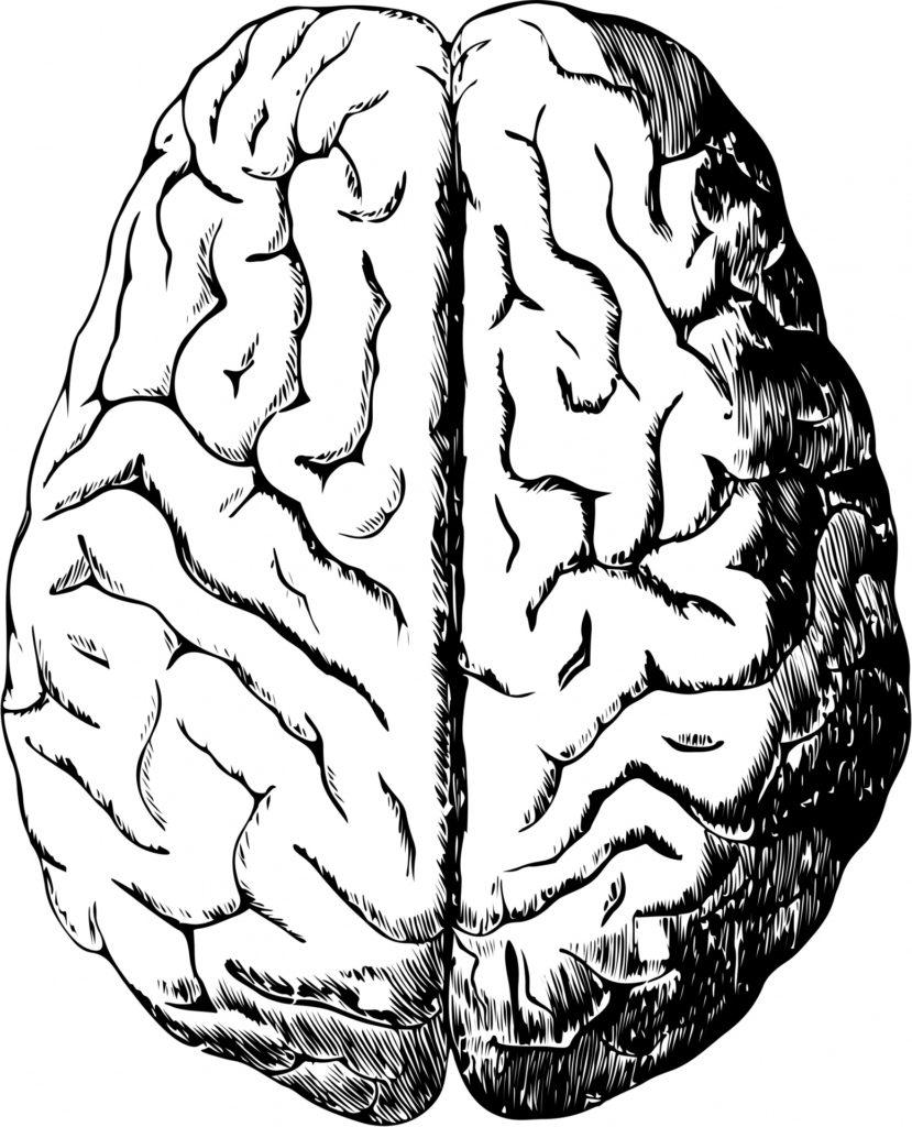 Behandling af hjernerystelse